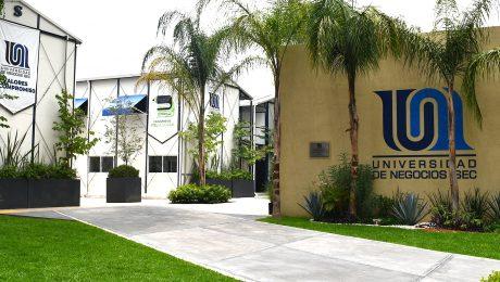 administracion-de-empresas-en-universidades
